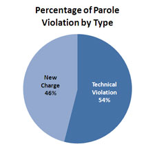 Percentage of Parole Violation by Type