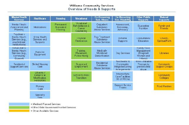 Williams Community Services Overview of Needs & Supports